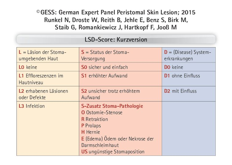 Kitteltasche Score PDF